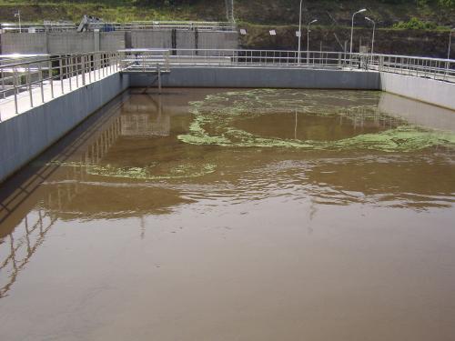 我公司某污水处理厂案例